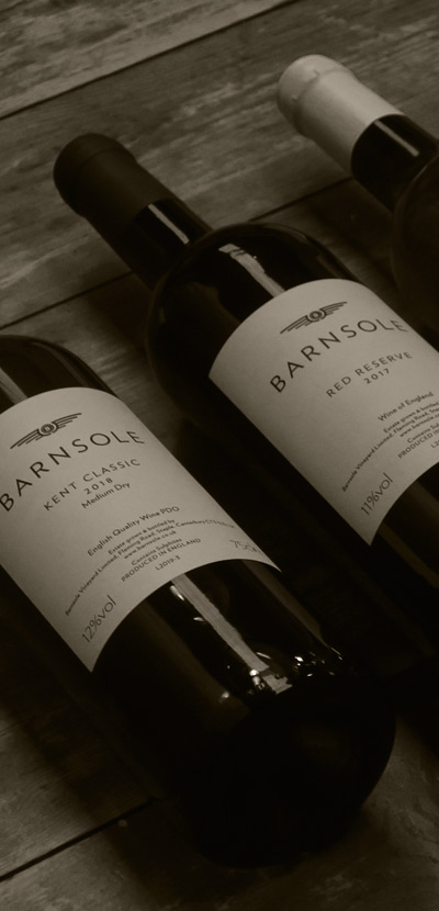 three  bottles of Barnsole wines - photo